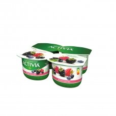 ACTIVIA jogurtas su miško uogomis, 2,9%, 480g