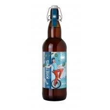 KVIETINIS alus butelyje 4,6%, 1l